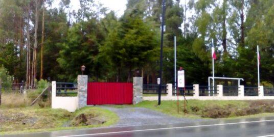 PUERTO MONTT  ARRIENDA LOCAL COMERCIAL SECTOR  ILQUE